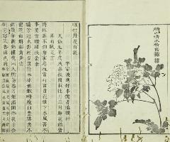 詩文-九世紀